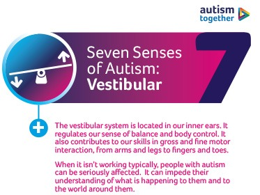 Vestibular Sense and the Autistic Spectrum