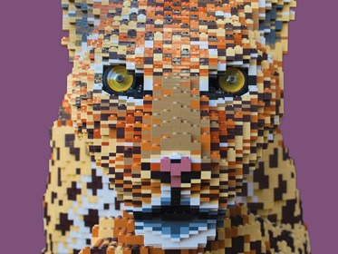 Chester Zoo Lego Autism Together